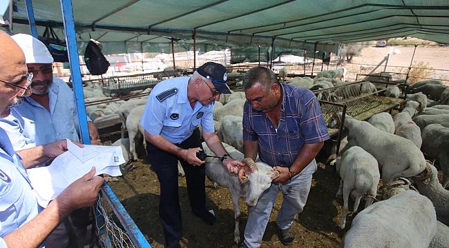 Karabağlar'da kurban kesim ve satış yerleri denetleniyor