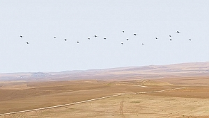 Savunma Sanayi Başkanı İsmail Demir ilk kez yayınladı! KERKES projesi başladı
