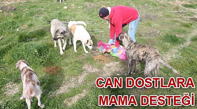 Can Dostlara Mama Desteği