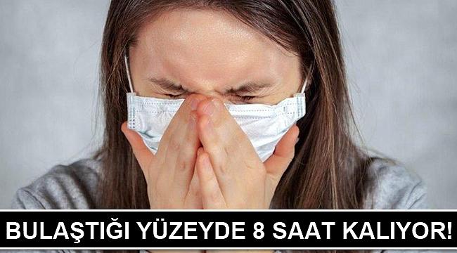 İnfluenza virüsü bulaştığı yüzeyde 8 saat kalıyor! İnfluenza nedir?