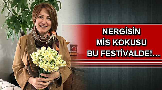 Nergisin mis kokusu bu festivalde!…