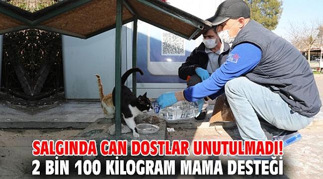 Gaziemir'de 2 bin 100 kilogram mama desteği!
