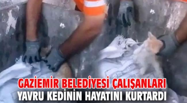 Gaziemir Belediyesi çalışanları yavru kedinin hayatını kurtardı
