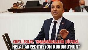 """CHP'li Polat, """"Haramzadelerin bütçesi, Helal Akreditasyon Kurumu'nun"""""""