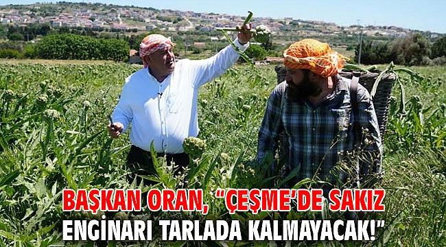 """Başkan Oran, """"Çeşme'de sakız enginarı tarlada kalmayacak!"""""""